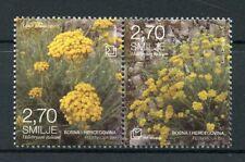 Bosnia & Herzegovina 2017 MNH Flora Helychrisum 2v Set Plants Flowers Stamps