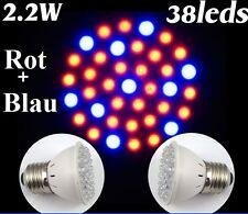 LED Pflanzenlampe 2.2 Watt 38 Leds Pflanzenlicht Wachstums Lampe Grow Light 2.2W