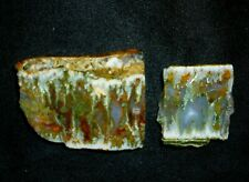 2 COLORFUL WORLD FAMOUS LINDA MARIE PLUME AGATE ROUGH-CUT SLABS (ONE AN END-CUT)