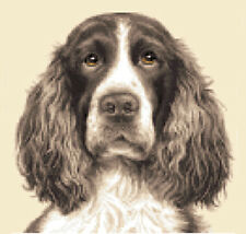 LIVER SPRINGER SPANIEL dog - Full counted cross stitch kit
