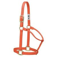 Weaver Original Non-Adjustable Nylon Halter with Box-Stitching and Rolled Throat
