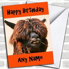 Funny Scruffy Llama Birthday Customised Card