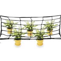 Secret Jardin pflanzennetz WebIT 120 W 240x120 cm SCROG réseau ranknetz Growbox