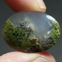 15ct AAA NATURAL Green Brown RED GARDEN MOSS AGATE ~3D Landscape PICTURE~
