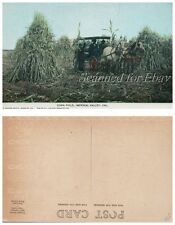 Early 1900s Farmers Horse & Wagon Imperial Valley California VINTAGE POSTCARD