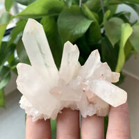 Clear White Natural Quartz Crystal Stone Cluster Mineral Specimen Healing Stone