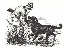 Flat Coated Retriever - 1964 Dog Art Print - Matted