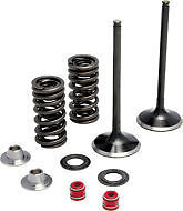 KX450F KX 450F KIBBLEWHITE INTAKE VALVE VALVES AND SPRING KIT 2009-2015