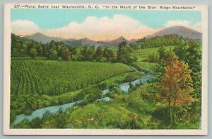 Waynesville North Carolina~Rural Scene Blue Ridge Mts~Vintage Postcard