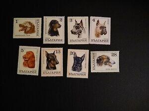 Dog breeds Vintage set of postage stamps: