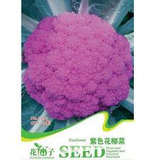 FD1284 Purple Cauliflower Seed Broccoli Seed Green Vegetable ~1 Pack 20 Seeds~