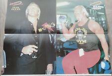 Hulk Hogan Poster (Back Side Tiger Mask) 2 Sets WWE WCW NJPW AJPW