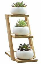 Jusalpha Ceramic Small White Round Ceramic Succulent Plant Pot w/ 3 Tier Bamboo