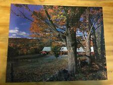 "Golden ""Autumn's Touch"" 1000 Piece Jigsaw Puzzle"