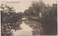 The Waveney Bungay, Suffolk Postcard, BC006