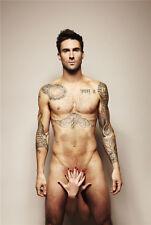 "Maroon 5 Adam Levine Pop Rock Band Music Poster 20x13"" A42"