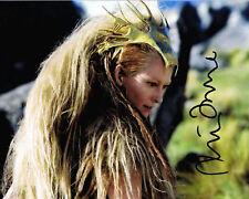 TILDA SWINTON Narnia Witch HAND SIGNED 10x8 Photo