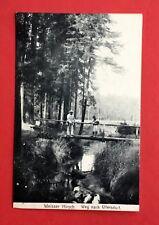 AK DRESDEN Weisser Hirsch 1922 Weg nach Ullersdorf   ( 43913
