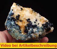 7931 Lazulith lazulite Quarz ca 7*11*8cm Rapid Creek Yukon Kanada 1993 MOVIE