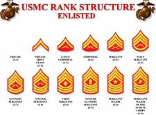 INSIGNIA OF THE U.S. MARINE RANKS POSTER 24 X 36 Inches Looks Awesome!