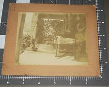 Early White Calico Cat Rocking Chair Front Porch Pet Kitty Antique Cabinet Photo