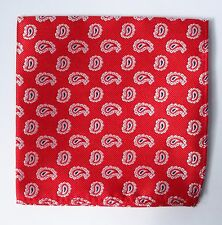 Hankie Pocket Square Handkerchief Red & Silver White Paisley
