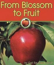 From Blossom to Fruit Apples