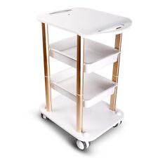 NEW Arrvial Beauty Salon Trolley Spa Styling Pedestal Rolling Cart Two Shelf ABS