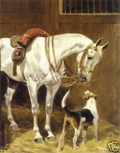 VICTORIAN HORSE FOXHOUND #2 FOX HUNT CANVAS ART PRINT