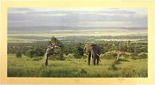 """Anthony GIBBS """"dentro la spaccatura"""" Elefante Africa le FIRMATO DIMENSIONI: 52cm x 90cm NUOVO"""