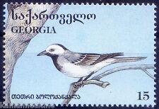 White Wagtail, Small Bird, Birds, Georgia 1996 MNH - C104