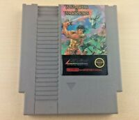 NES WIZARDS & WARRIORS Nintendo Video Game Cartridge Only TESTED