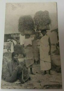 Vintage  Postcard -  Ceylon  Grass Cutters  Jaffna  1921