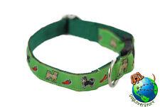 Chihuahua Dog Breed Adjustable Nylon Collar Small 7-11″ Green
