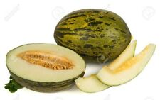 "HEIRLOOM MELON "" Piel desapo"" melting sweet DELICIOUS  15 seeds easy FRUIT"