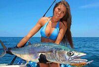 50 Eagle Claw Nickel Live Bait Hooks 8/0 FL119MG Tuna Wahoo Dorado