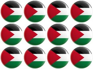 12 x Palestine Flag BUTTON PIN BADGES 25mm 1 INCH Palestinian Territories