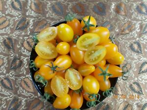 Tomatoe Seeds (solanum lycopersicum) 20 Fresh,Reliable & Viable