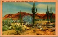 Vintage 1930's Cactus in the Desert, Red Rock Canyon California CA Postcard