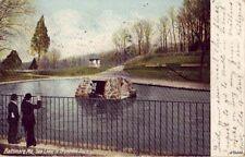 PRE-1907 BALTIMORE, MD SEA LIONS IN DRUID HILL PARK 1906