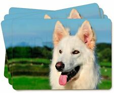 White German Shepherd Dog Picture Placemats in Gift Box, AD-WGSD2P