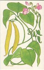 VINTAGE YELLOW WAX STRING BEANS RECIPE PRINT 1 KITCHEN EGGS FLOWERS TEA POT CARD