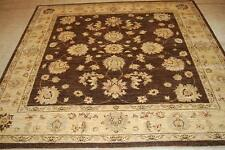 6 x 7 Brown Traditional Area Rug Hand-Knotted Chobi Peshawar  Square 6-7 ft Rug