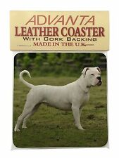 American Staffordshire Bull Terrier Dog Single Leather Photo Coaster , AD-SBT9SC