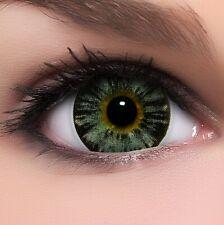 """BigEyes Circle Lenses Grau """"Nuddy Grey"""" Kontaktlinsen + GRATIS Behälter"""