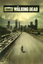 The Walking Dead Season 1 TV Poster - 24x36