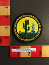 Vtg. Patch Greater Des Moines Iowa CACTUS CHALLENGE TULIP WINDMILL AVA 56DD
