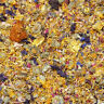 Dried Tortoise Flower Mix 50g, Ready to Feed, Tortoise Food