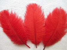 """FEATHERS RED X 5 pcs Ostrich Feathers Millinery and Crafts 4"""" - 6"""""""