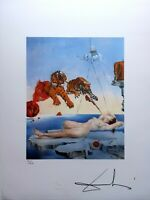Salvador Dalì - Litografia 50 x 65 numerata e firmata a matita